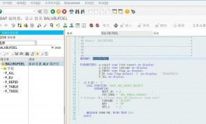ABAP重新设置ALV缓冲区程序
